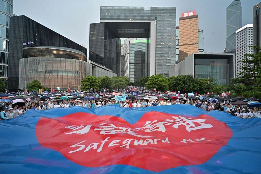 """People wave a large banner that reads """"safeguard Hong Kong"""" during a pro-government rally."""