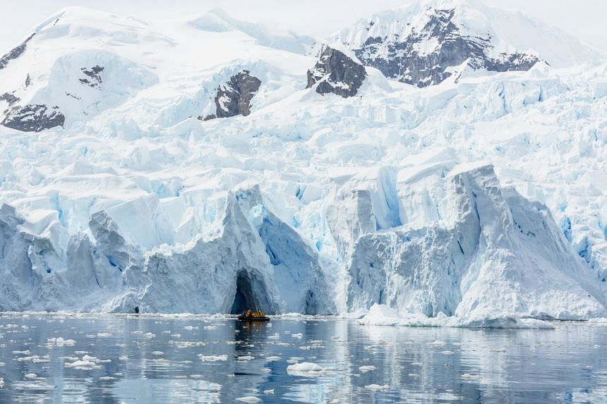 Explore the icebergs, glaciers and ice floes in Antarctica and see wildlife galore, including seals and sea birds.