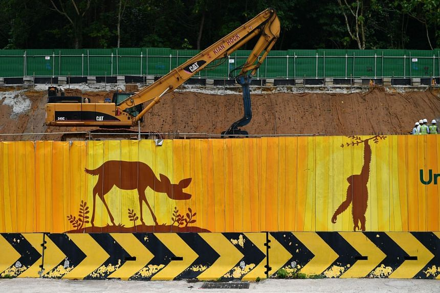 Since the announcement of the Mandai development plan, wildlife and nature groups have voiced concerns.