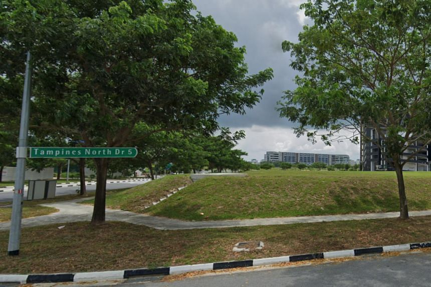 The site at Tampines North Drive 5, which is available for tender, is the first of four confirmed list sites for the second half of the 2019 IGLS programme.