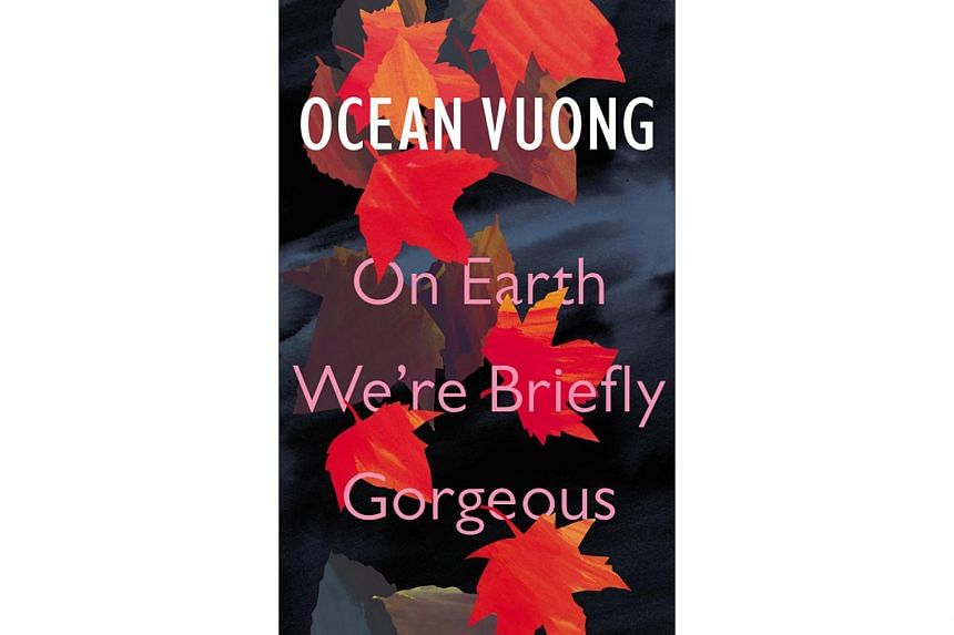 On Earth We're Briefly Gorgeous (above), the debut novel of Vietnam-born American writer Ocean Vuong, is a work of extraordinary beauty.