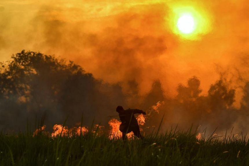 Indonesian authorities have declared a state of emergency in some provinces after detecting 84 hot spots.