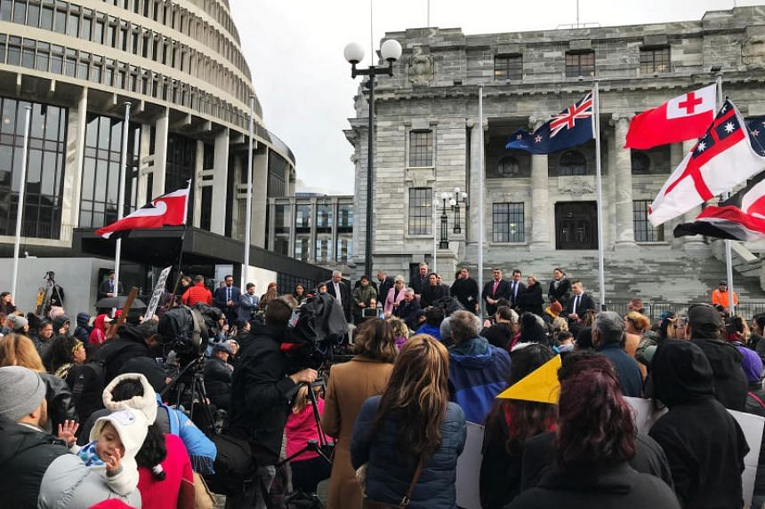 "Protesters call the children New Zealand's ""stolen generation"" - a reference to indigenous Australians forcibly taken from their families as children under an official policy of assimilation."