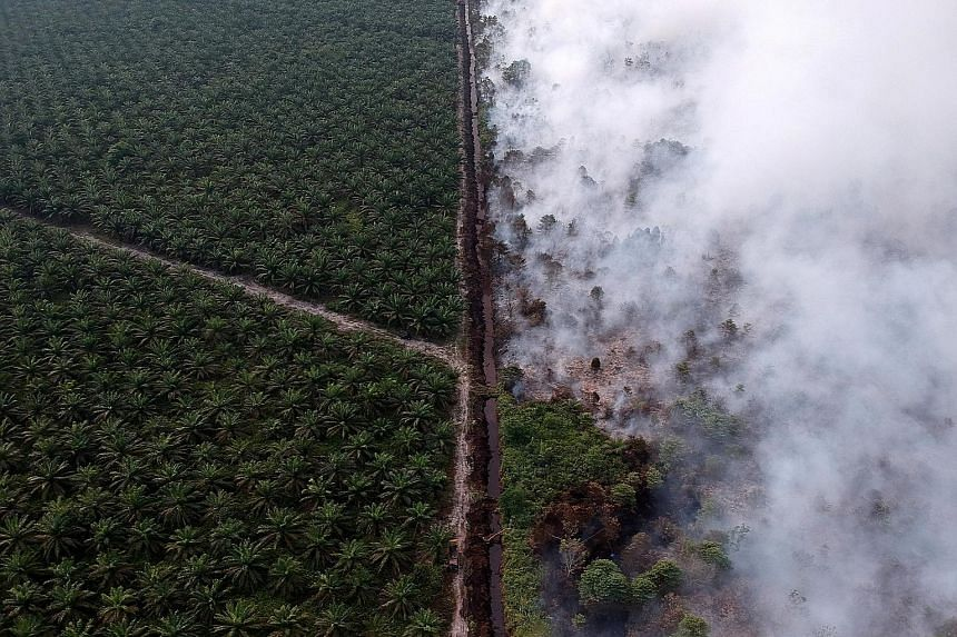 An aerial view of a forest fire next to an oil palm plantation in Muarojambi, Indonesia, on Tuesday. The Indonesian government has sent nearly 5,700 firefighting teams to douse the fires in various provinces.