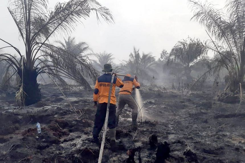Malaysian Meteorological Department director-general Jailan Simon said a few regions in Malaysia were already experiencing haze due to the fires in Riau.