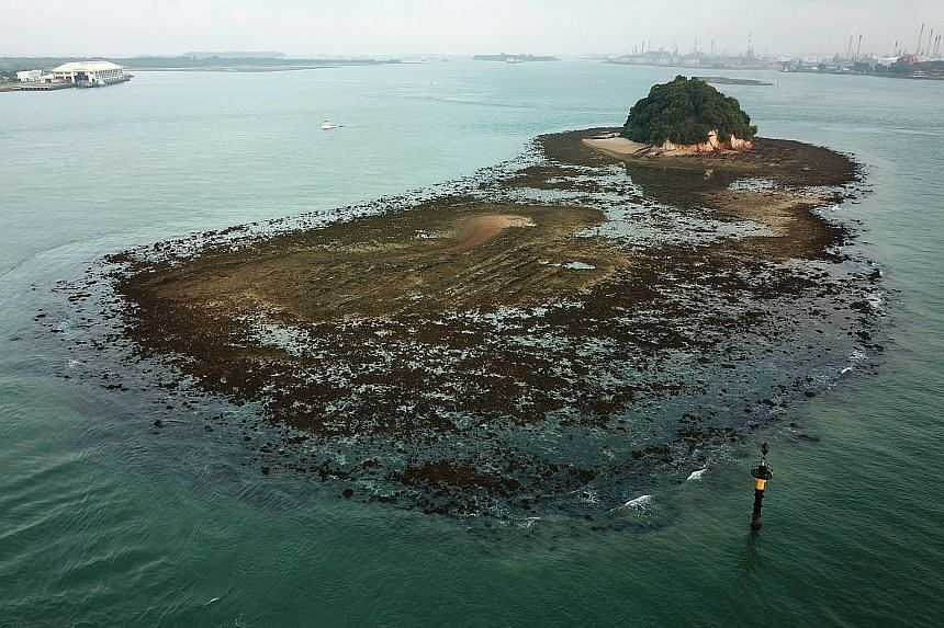 PULAU JONG: It is touted as one of the last untouched islands of Singapore. Much of this island is submerged underwater at high tide and only the cliffs covered in lush greenery can be seen. PULAU TEKUKOR: A small, thin island located just south of S