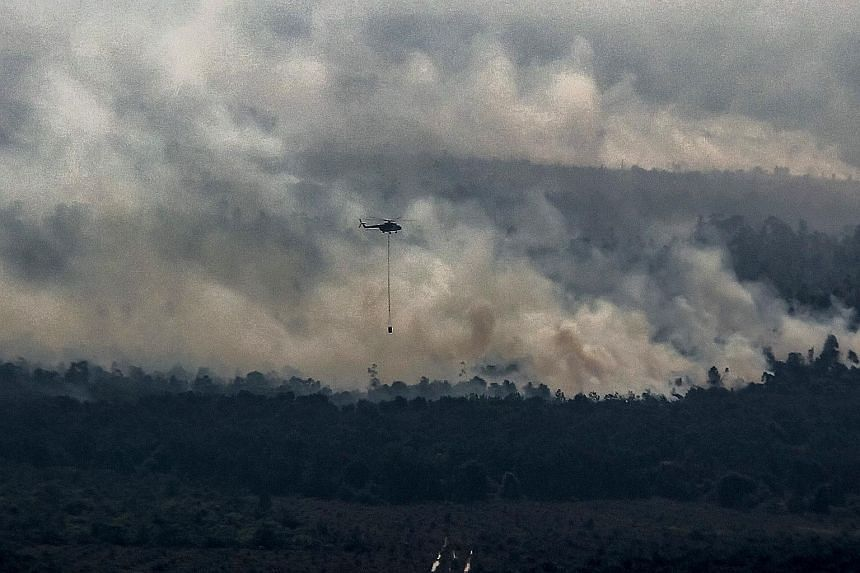 A helicopter carrying water attempting to extinguish a fire raging at a peatland forest in Pelalawan district, Riau province, last Friday. More than 5,000 personnel, including reinforcements from the military and police, have been deployed to Riau to
