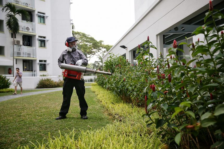 An employee at Eastvale Condominium placing sand granular insecticide in a crevice. Anti-mosquito measures have been stepped up at the condo, located in a dengue cluster. A pest control officer carrying out misting on the premises of Eastvale Condomi
