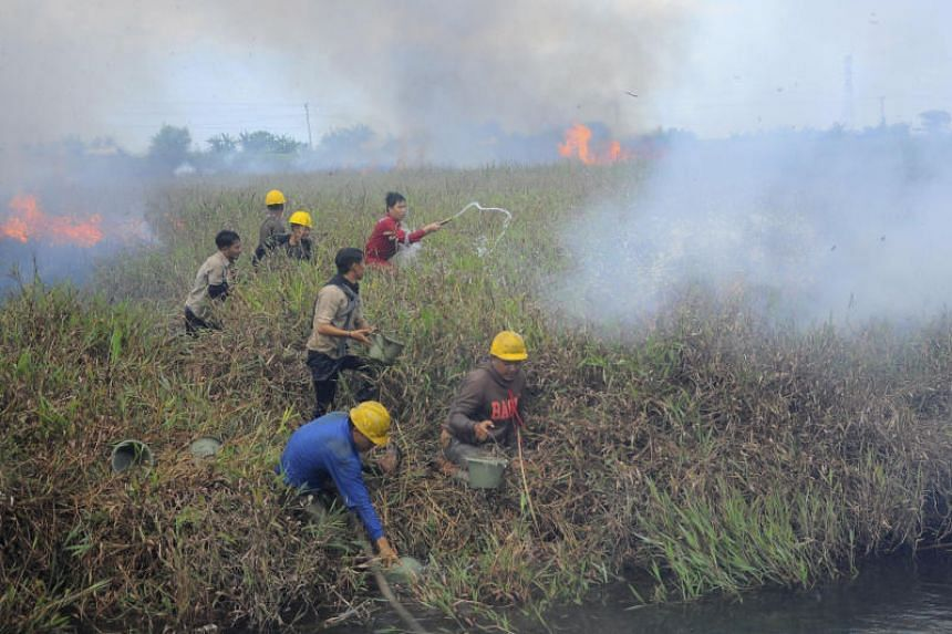 The raging hotspots in central and western parts of the archipelago have already prompted neighbouring Singapore and Malaysia to warn of higher risks of haze this year.