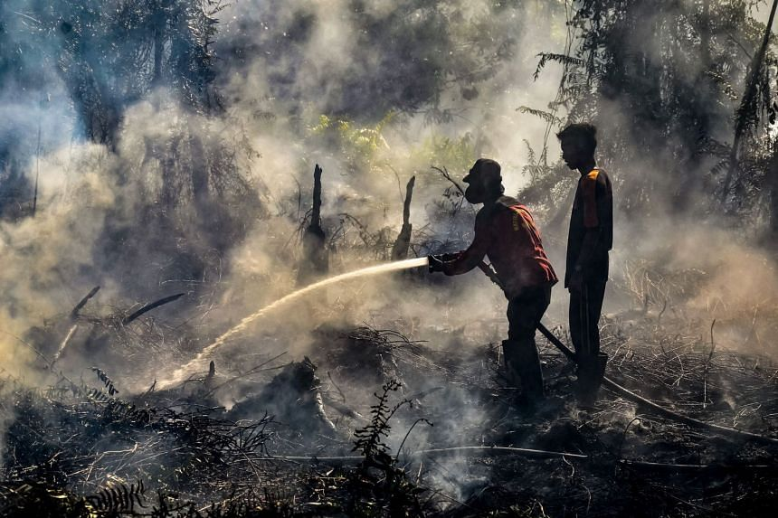 Firefighters battling to extinguish a fire at a peatland forest in Payung Sekaki regency in Pekanbaru, Riau province, on Indonesia's Sumatra island last Friday. President Joko Widodo wants provincial governors and regents to ensure farmers are prop