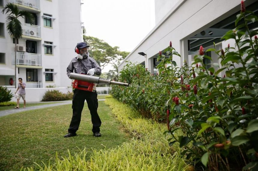 A pest-control officer carrying out misting in the premises of Eastvale Condominium on Aug 5, 2019.