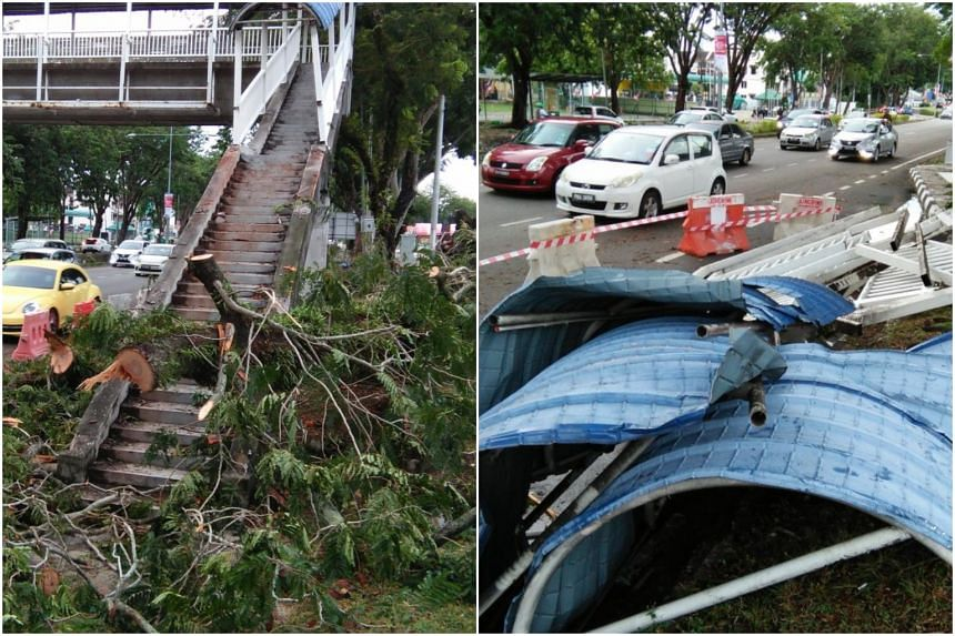 Dozens of trees in the state were uprooted, while zinc panels were torn apart during the 11pm storm which lasted about 30 minutes.