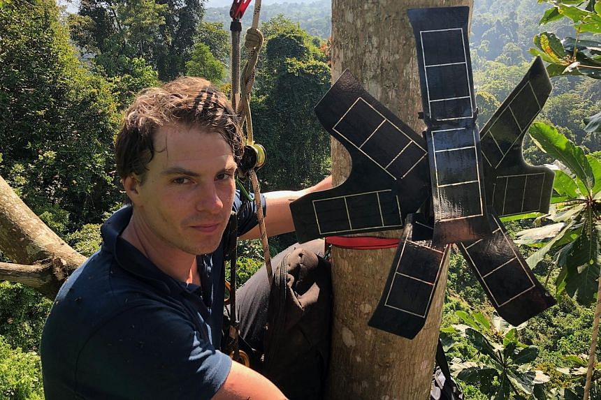 Rainforest Connection CEO Topher White training a villager on how the system works. The San Francisco-based non-profit organisation has been installing repurposed old phones, equipped with solar panels and a powerful microphone, high up in the trees