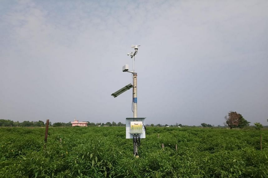 A sensor from Indian start-up Fasal. Its app monitors conditions to ensure the health of crops.