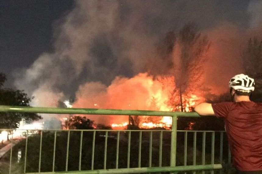 """The vegetation fire near Marina East Drive was """"approximately the size of two football fields""""."""