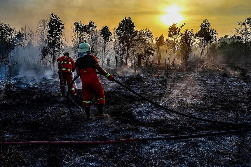 Firefighters putting out a fire in Kampar, Riau province, on Indonesia's Sumatra island yesterday. The authorities have deployed aircraft for water bombing, while efforts are also being made to find out the perpetrators of land and forest fires, and