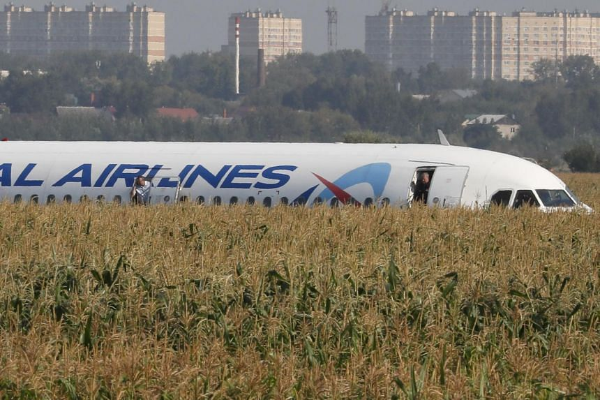 The plane landed in a cornfield with undeployed landing gear and turned-off engines.