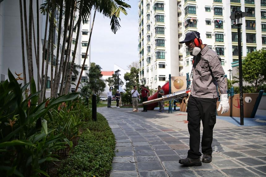 Singapore is still in the peak dengue season and the total number of dengue cases this year is expected to rise further.