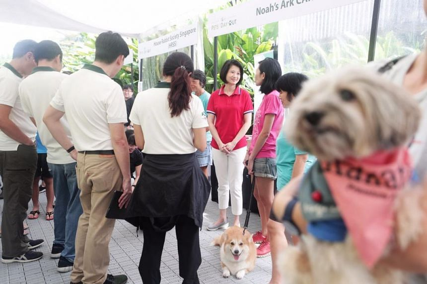 Senior Parliamentary Secretary for Home Affairs and National Development Sun Xueling announced plans to discuss initiatives such as staff training to improve animal handling and care at the Pets' Day Out event on Aug 17, 2019.