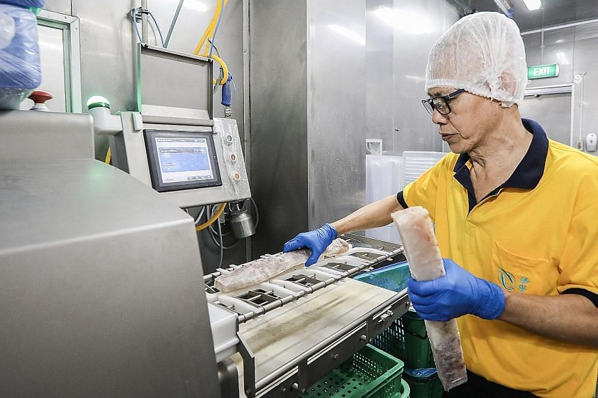 After undergoing eye surgery, Hai Sia Seafood employee Tan Teng Kwang, 64, was redeployed to the firm's processing plant, where he handles tasks such as quality assessment.