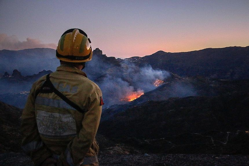 A firefighter observing flames from a forest fire in Tejeda on the Spanish island of Gran Canaria. More than 12,000ha have been charred on the western slopes of the island, but the authorities yesterday said firefighters have made progress against th