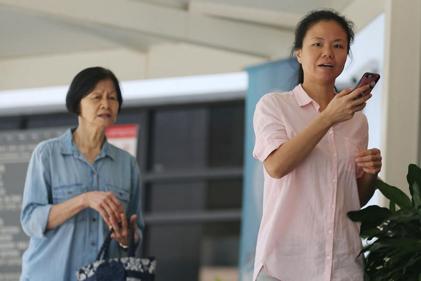 According to court documents, Fong Leok Moy, 68, and Wong Phuay Yee, 41, went to a FitFlop outlet in Wisma Atria shopping centre on Oct 15, 2017, and made off with two pairs of footwear worth nearly $300.