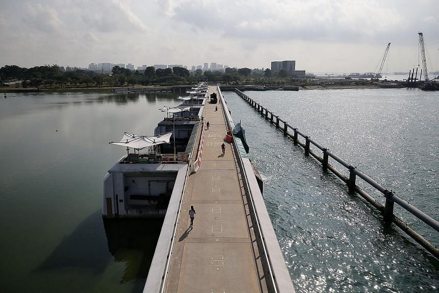National water agency PUB has planned for a second pump house at Marina Barrage. Experts said Singapore should look at more than engineering options to tackle the rise in sea levels. One solution could be a combination of natural eco-barriers, such a