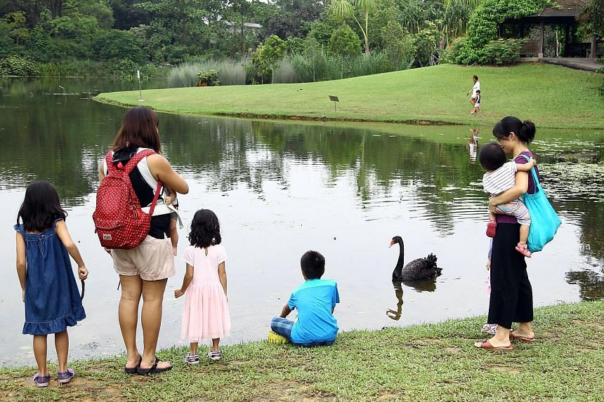 Singapore is in the midst of a dry spell, with parched grass, dry ground and low water levels in ponds and reservoirs, including at the Singapore Botanic Gardens' Eco-Lake (above), which is usually a green oasis, as seen in this 2015 file photograph