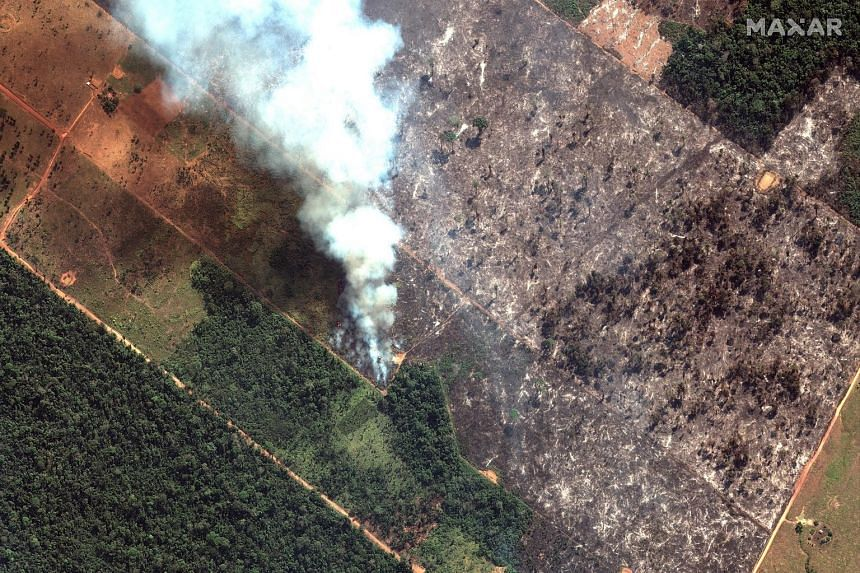 A satellite image showing a close-up view of a fire south-west of the city of Porto Velho in Brazil. The latest official figures show 76,720 forest fires were recorded in Brazil so far this year - the highest number for any year since 2013.