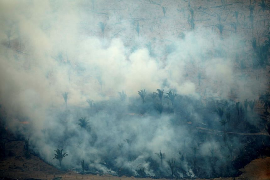 An aerial view of a tract of the Amazon jungle burning as it is cleared by loggers and farmers in Boca do Acre,, Brazil.