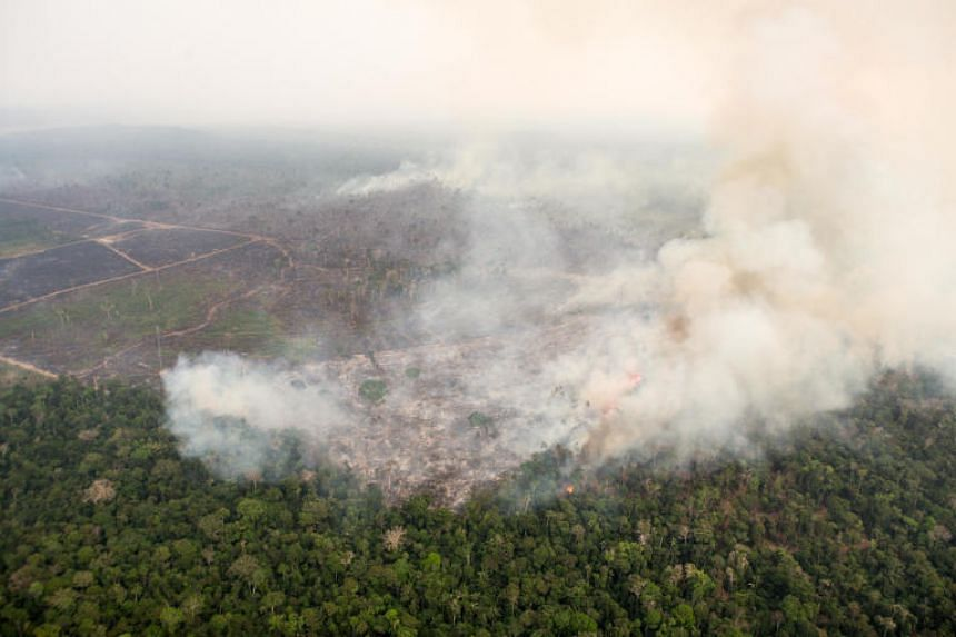 An aerial view of fires in various regions of the Jamari Forest Reserve in Brazil on Aug 24, 2019.