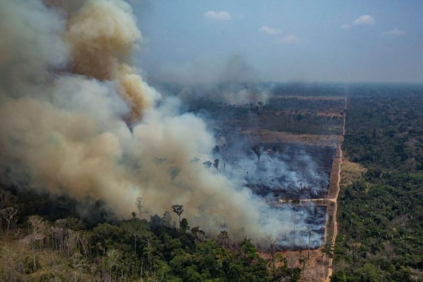 A picture released by Greenpeace shows smoke billowing from forest fires in the municipality of Candeias do Jamari, close to Porto Velho in Rondonia State, in the Amazon basin in north-western Brazil, on Aug 24, 2019.
