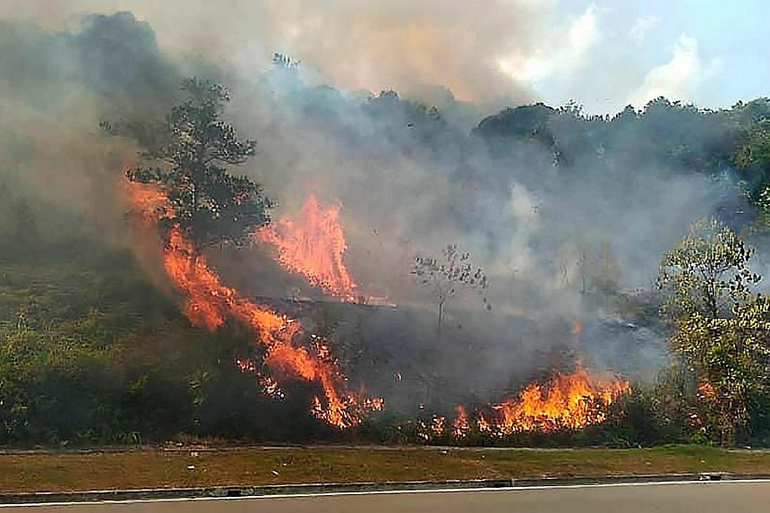 Some 16ha of forest at Kampung Pekajang in Johor started burning last Friday afternoon due to the current dry weather. Strong winds then caused the fire to spread, engulfing some 98ha of the forest.