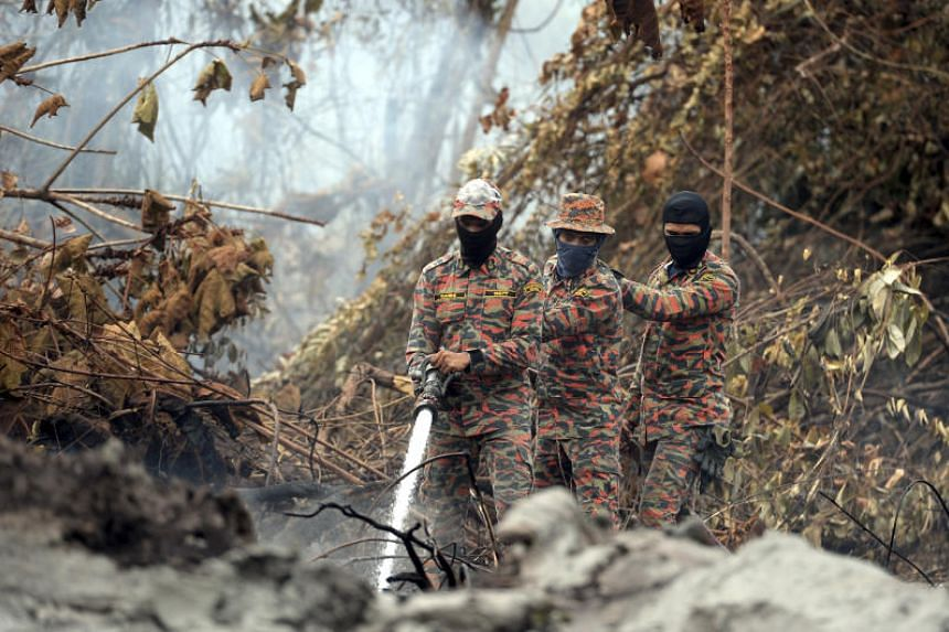 Members of Malaysia's Fire and Rescue Department working to clear a forest fire in Jalan Tanjung Kupang, near Gelang Patah in Johor, on Aug 27, 2019.