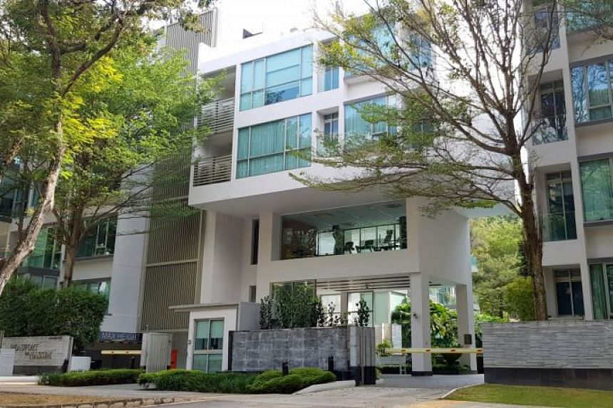 The tender of the 30-unit Beaufort On Nassim marks the first collective sale in Nassim Road in 13 years, said Savills Singapore.