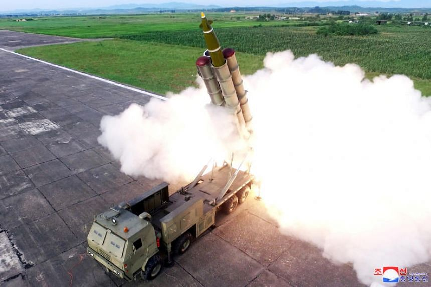A missile is fired during the test of a multiple rocket launcher in this undated photo released on Aug 25, 2019.