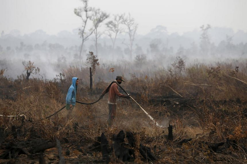 Indonesia's Ministry of the Environment and Forests is also investigating 24 companies on Borneo and Sumatra island in connection with fires in their concession area.
