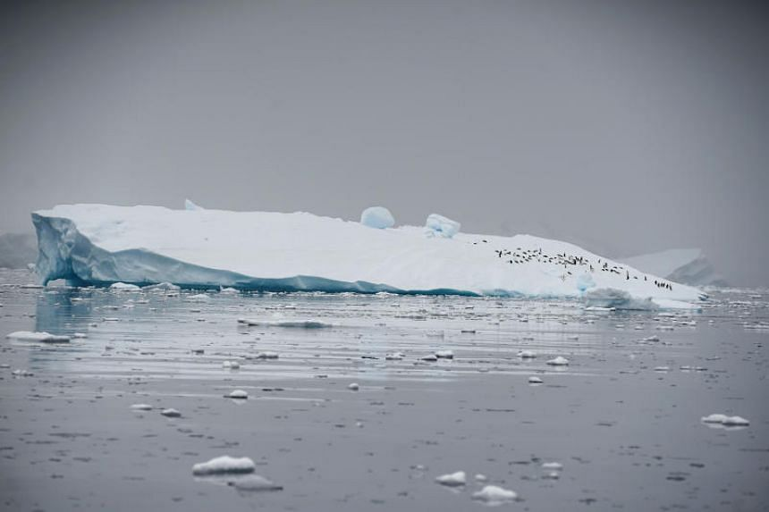 An iceberg floating in Andvord Bay, Antarctica, on Feb 14, 2018.