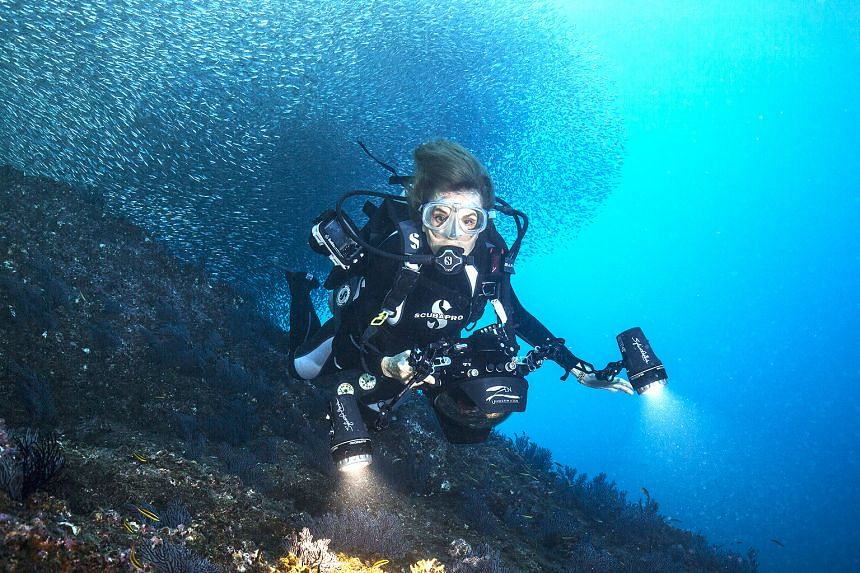 Dr Sylvia Earle's love affair with the ocean started when she was three years old, Now 84, she is working on the third atlas of the oceans, still globetrotting, inspiring people to save the planet, and diving.