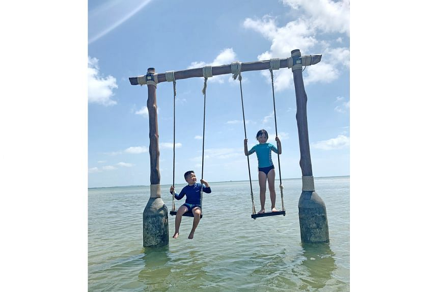 The Residence Bintan is designed for families, where children can play on swings in the sea (above) or cosy up to sea creatures such as the horn-eyed ghost crab.