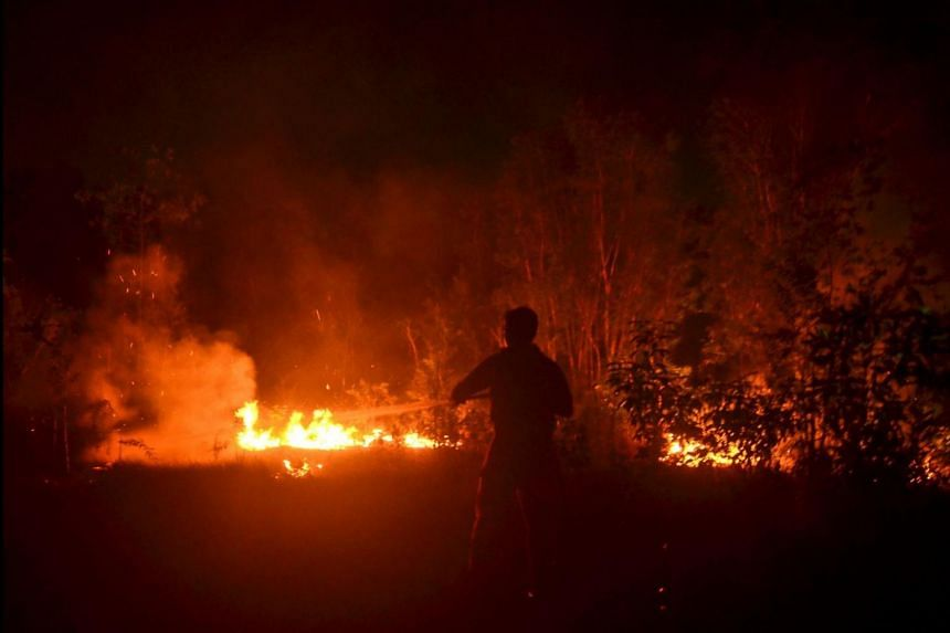 This picture taken on Aug 21, 2019 shows an Indonesian firefighter battling a forest fire in Pekanbaru, Riau in Indonesia.
