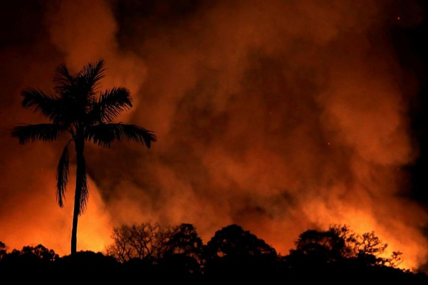 A fire burns a tract of Amazon jungle as it is cleared by loggers and farmers near Porto Velho, Brazil, on Aug 31, 2019.