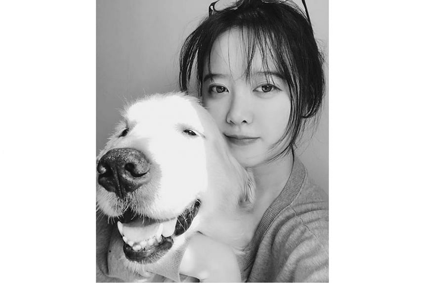 South Korean actress Ku Hye-sun will donate proceeds of more than $20,000 from her recent art exhibition to an animal charity.