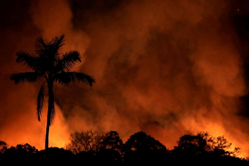A fire burns a tract of Amazon jungle as it is cleared by loggers and farmers near Porto Velho, Brazil on Aug 31, 2019.