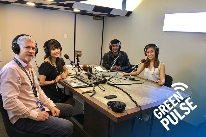 (From left) In this Green Pulse podcast,ST's environment correspondent Audrey Tan and assistant foreign editor David Fogarty chat with Mr Kristian-Marc Paul, 25, and Ms Annika Mock, 20, two of the young organisers of the upcoming Singapore Climat