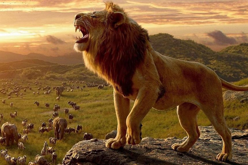 Despite a summer release schedule that included Lion King, the film business finds itself lagging last year's surge.