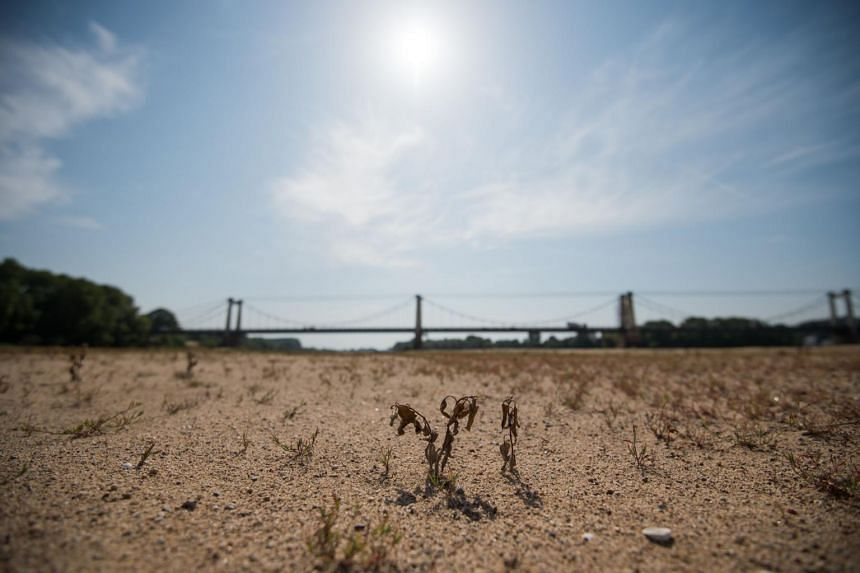 A dried up area of the River Loire in western France, on July 24, 2019.