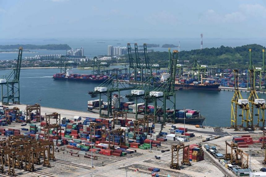 A view of cargo ships berth at Tanjong Pagar and Pulau Brani container terminals on Aug 19, 2019.