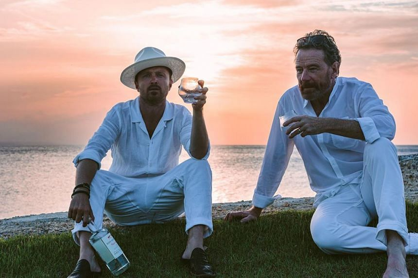 Aaron Paul held a 12-day bash in the Dominican Republic to celebrate his 40th birthday, with fellow Breaking Bad actor Bryan Cranston (right) in attendance.