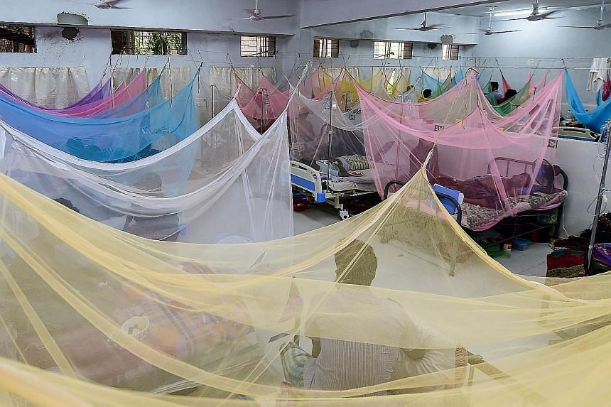 Bangladeshi patients suffering from dengue fever being treated at the Shaheed Suhrawardy Medical College and Hospital in Dhaka this week. The number of dengue infections in Bangladesh has soared over the past month. A total of 50,974 people were infe